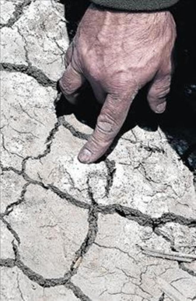 Grietas provocadas por la sequía.