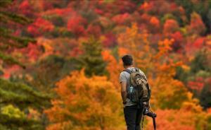 Un excursionista, en un bosque en pleno otoño.