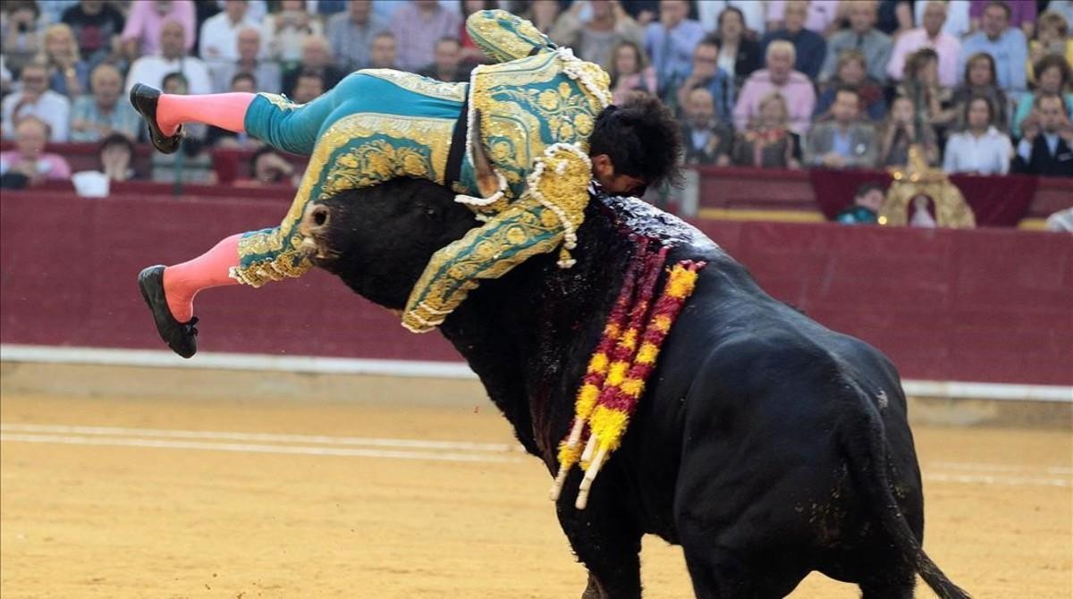 Cayetano Rivera sufre una cornada en la faena a su primer toro de Parlade durante la corrida de la Feria del Pilar de Zaragoza.