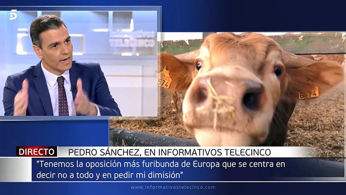 La crítica de Monegal: La seva primera entrevista, Sánchez la dona a Tele 5