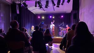 Imagen de uno de los conciertos celebrados en la Casa Elizalde.
