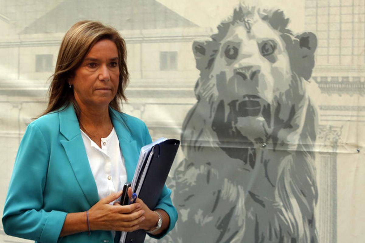 La ministra de Sanidad, Ana Mato, llega al Congreso, este miércoles.