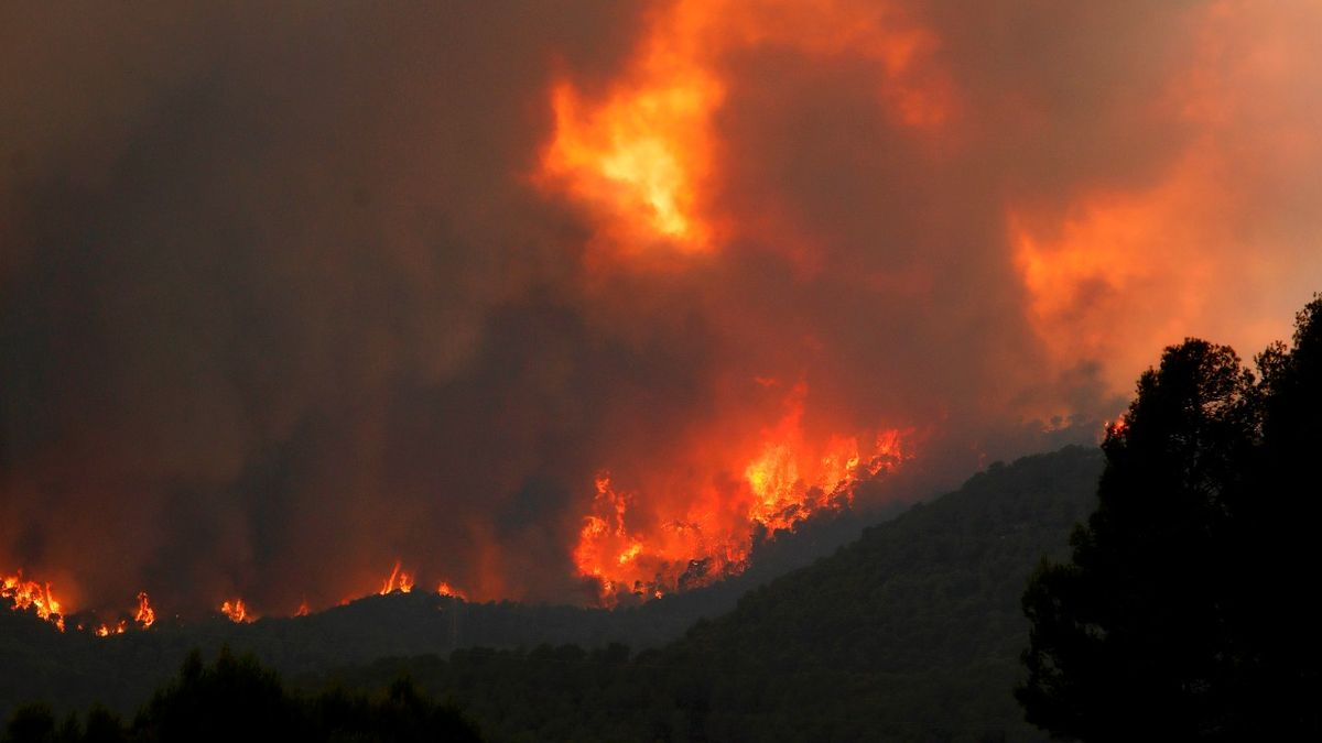 Vista del incendio originado en Santa Coloma de Queralt este sábado.