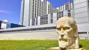 El Hospital Ramón y Cajal.