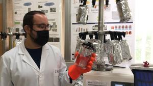 La UA trabaja en la extracción y purificación del almidón y los antioxidantes.