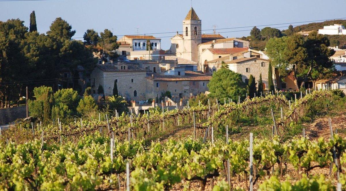 Vista del municipio de Avinyonet del Penedès.