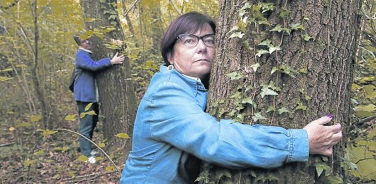 Participants en l'assaig clínic passegen pel bosc i s'abracen als arbres.