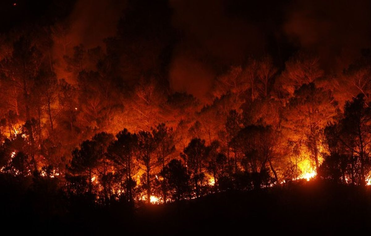 Las llamas, descontroladas en un bosque cercano a Boadella, la pasada noche.