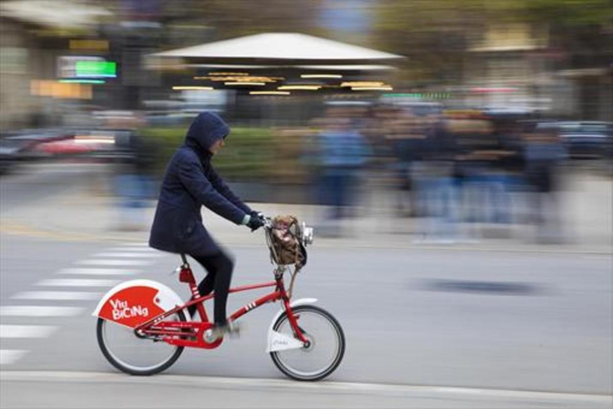Un usuario del Bicing, el servicio público de bicicletas de la ciudad.