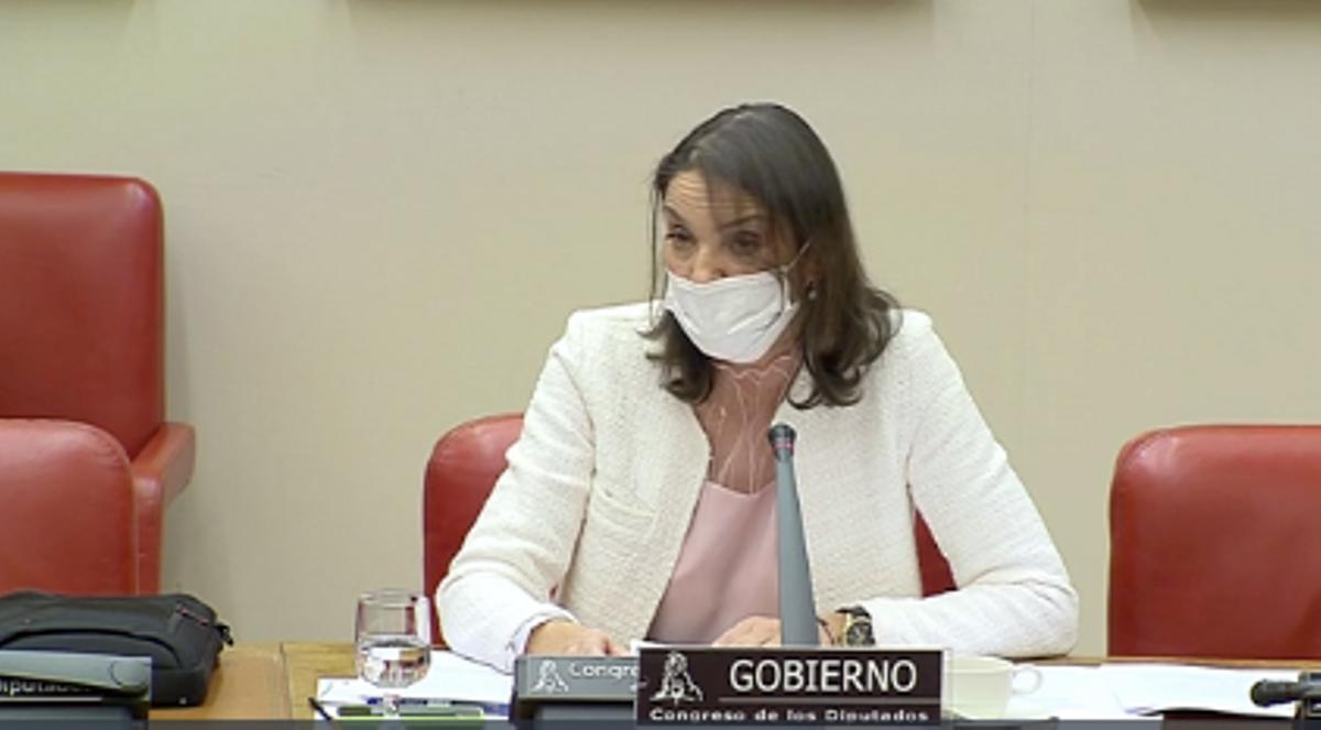 La ministra de Industria, Comercio y Turismo del Gobierno de España, Reyes Maroto, durante la comparecencia ante la comisión parlamentaria, este diciembre del 2020.
