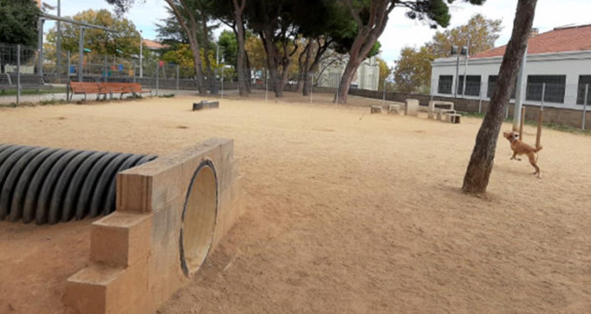 Área lúdica para perros