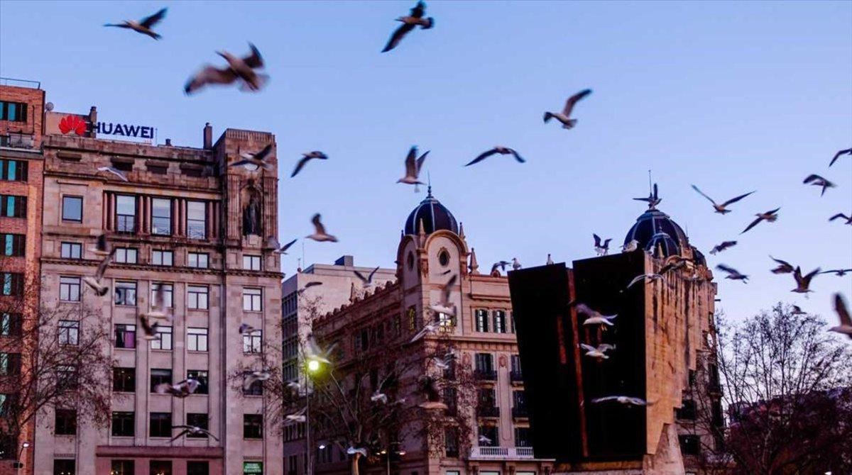 Edificio en plaza Catalunya que podría albergar pisos turísticos .