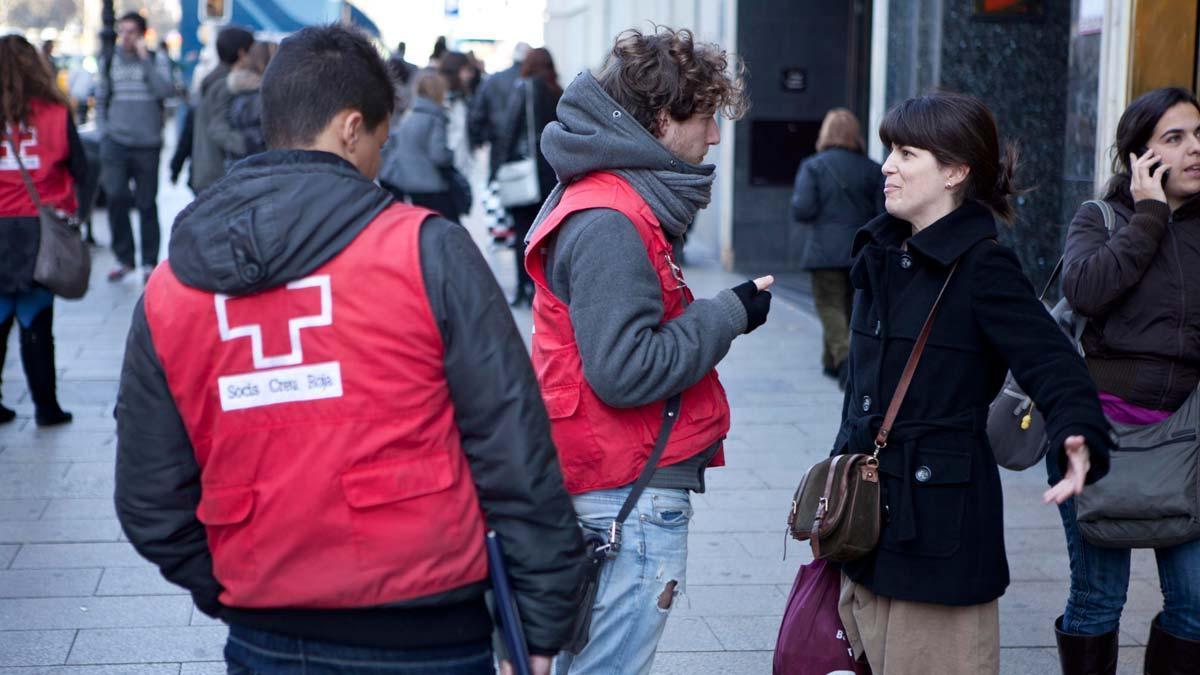 Una de cada quatre oenagés catalanes va tancar amb pèrdues el 2020