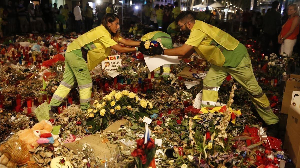Trabajos de retirada de las ofrendas de la Rambla en honor a las víctimas del atentado.