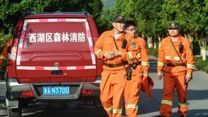 Un grupo de operarios participa en la búsqueda del leopardo huido del zoo de Hangzhou.