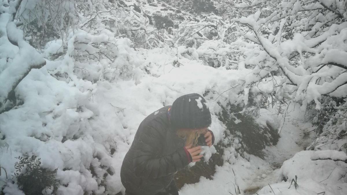 Comença la primavera amb una onada de fred siberià i neu en cotes baixes
