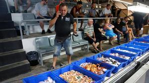 Subasta de pescado de la tarde en la lonja de Barcelona.