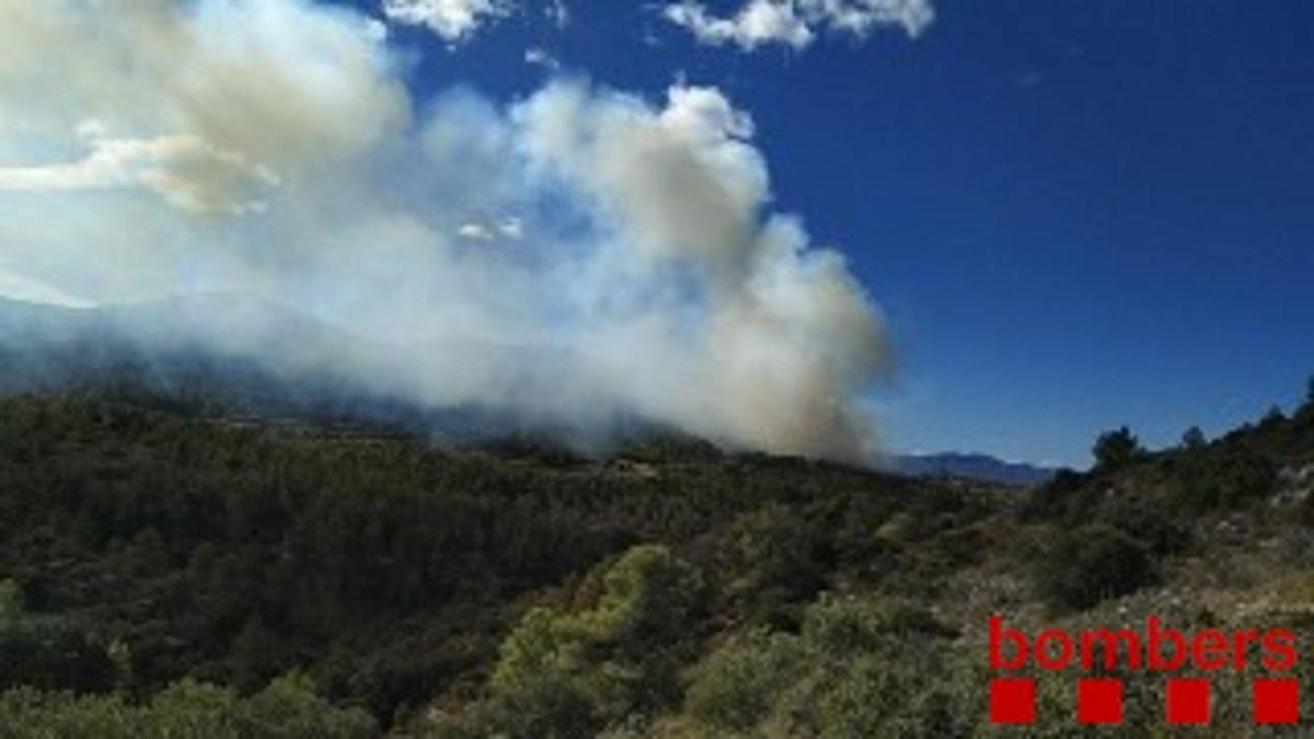 Controlat l'incendi forestal de Tivissa que crema des d'ahir