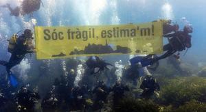 Unos 70 buceadores protestaron sumergidos en el mar por la preservación de las Illes Formigues.