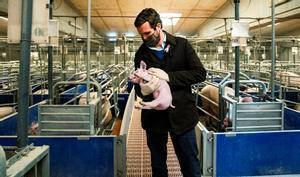 Pablo Casado en una granja porcina en Castellnou de Seana, en la provincia de Lleida, hace unos días.