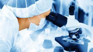 Un profesional del sector sanitario mirapor un microscopio.