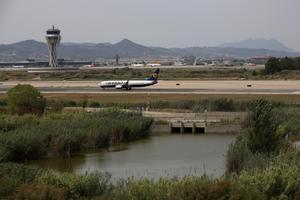 El espacio natural de la Ricarda, junto al aeropuerto de El Prat.