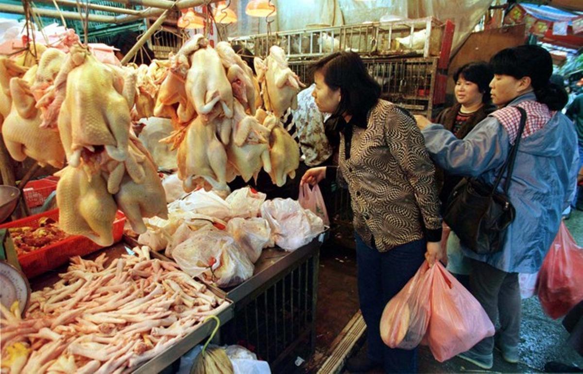 Mujeres chinas compran pollo en un mercado.