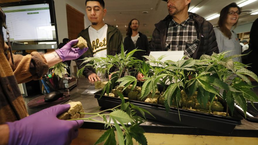 New York legalizes recreational marijuana