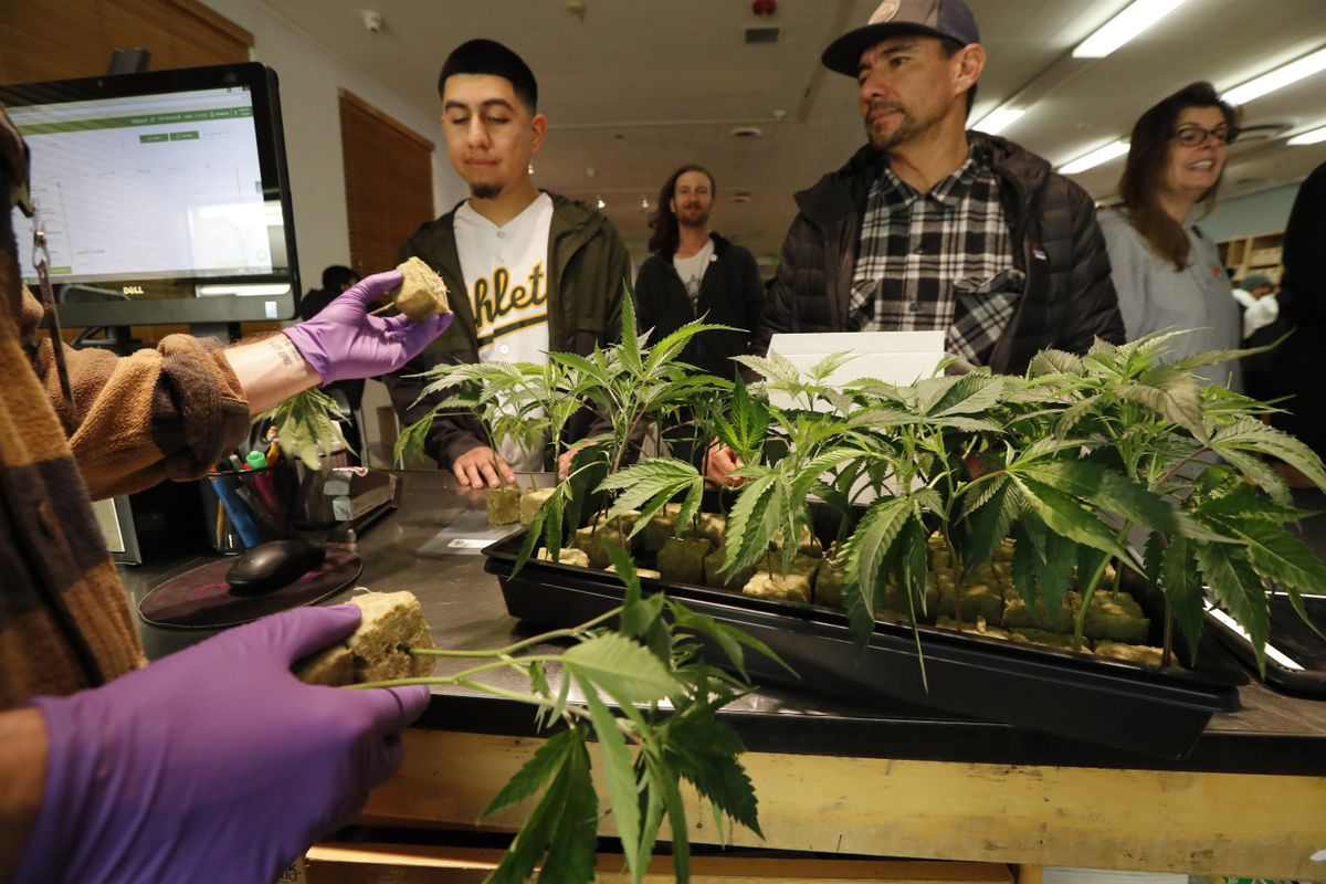 Punto de venta de marihuana al detalle en Oakland, en California, donde el consumo recreativo se legalizó en 2018.