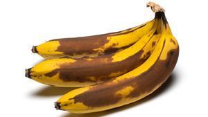 Rafa Ruiz. Maduración y putrefacción de bananas.