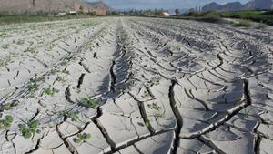 España, una de las grandes perjudicadas por el cambio climático