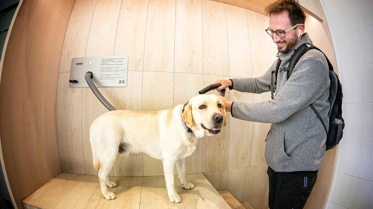 Autolavado de mascotas: Fresh Animals