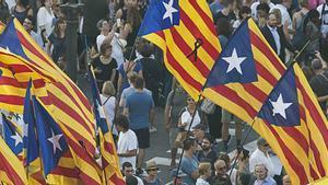 Estelades en una manifestación.