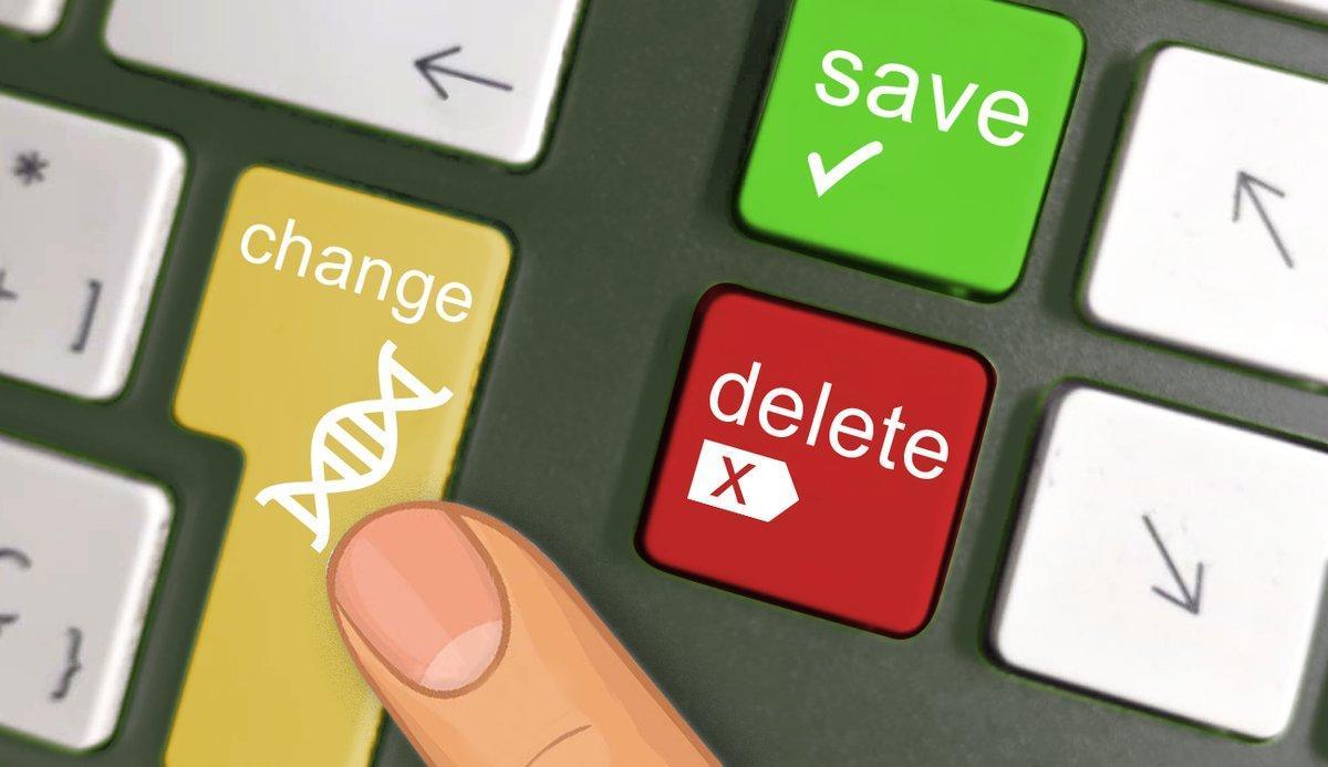 El momento de decidir el futuro de la humanidad