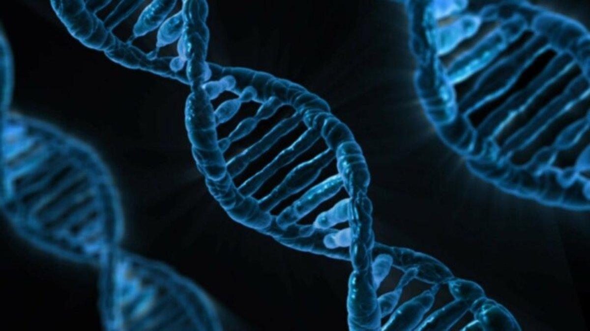 El principal responsable de esta segunda ola de contagios es el 'mutante G614' del coronavirus