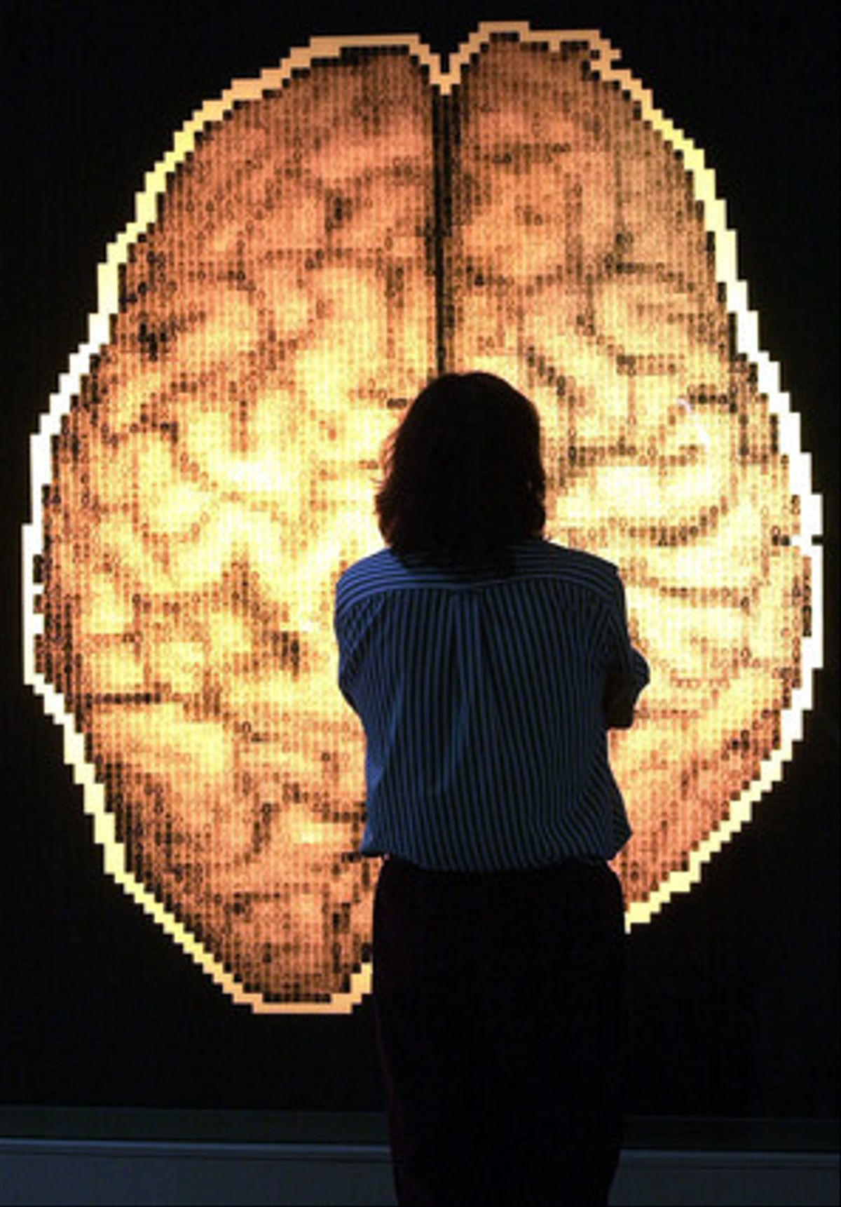 Un visitante observa un mapa del cerebro humano.