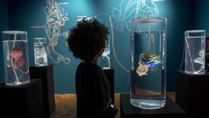Barcelona. 11.06.2021.  Icult.  Instalación 'Ecosystem of Excess' de Pinar Yoldas que se exhibe dentro de la exposición 'Ciencia Fricción' en el CCCB. Fotografía de Jordi Cotrina