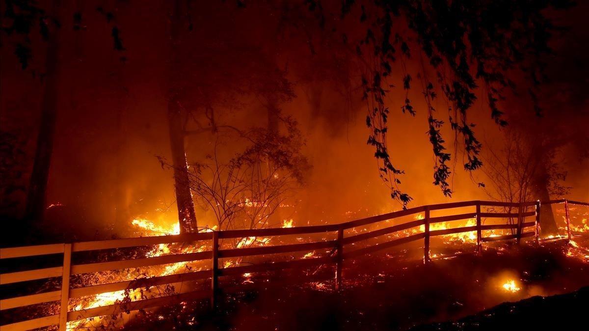 Otro foco de los incendios que vive California, este en Santa Rosa.