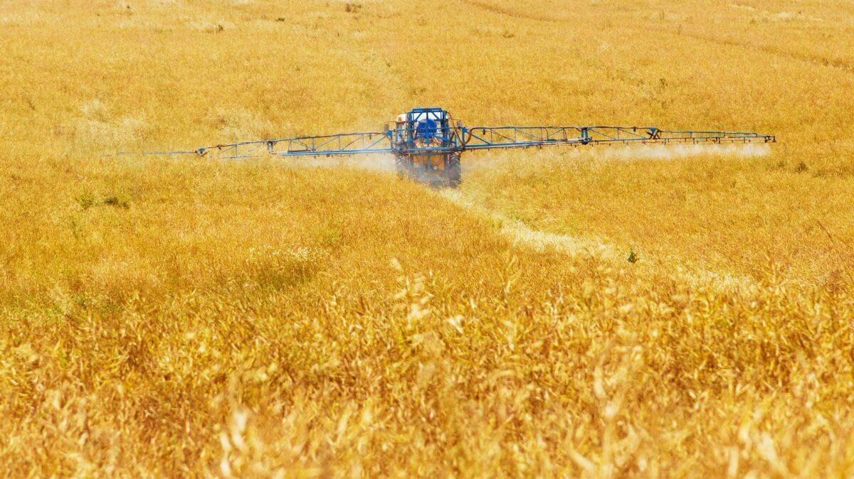 Murcia y Canarias, entre los lugares de la UE más contaminados por nitratos