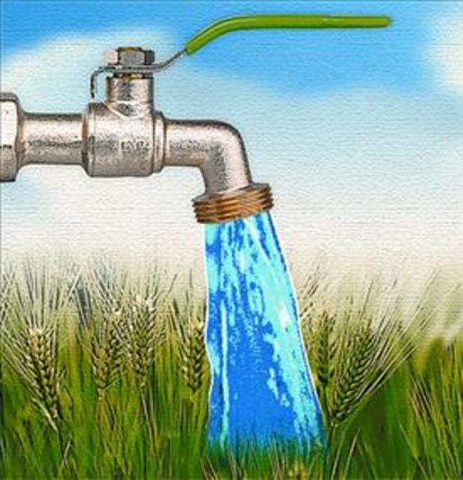 Agua, PIB y agricultura