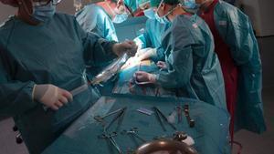 Porten a terme al Japó el primer trasplantament de pulmó a partir de donants vius