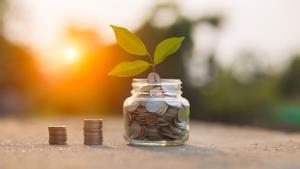 Construir una estratègia per a la transició ecològica