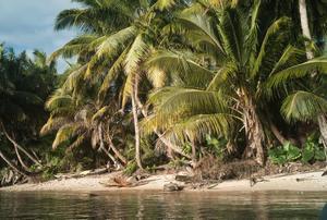 Isla de Sain Marie, en Madagascar, donde han aparecido los cuerpos de los ecologistas asesinados.