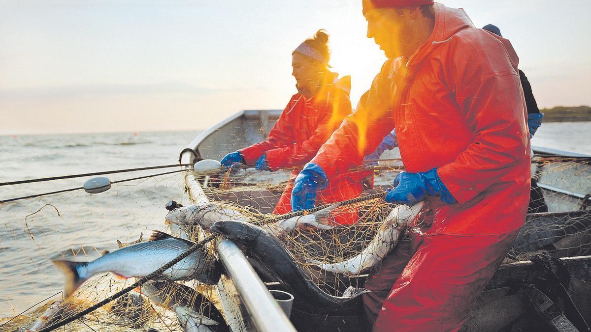 Alaska ha sido pionera en el desarrollo de un sistema de gestión de la pesca que hoy en día es el más avanzado, estricto y eficaz del mundo