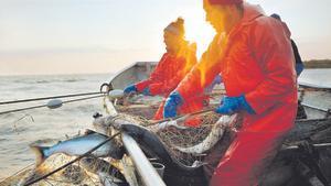 «La solució a la sobrepesca no és deixar de menjar peix salvatge, sinó escollir-lo de pesques sostenibles»