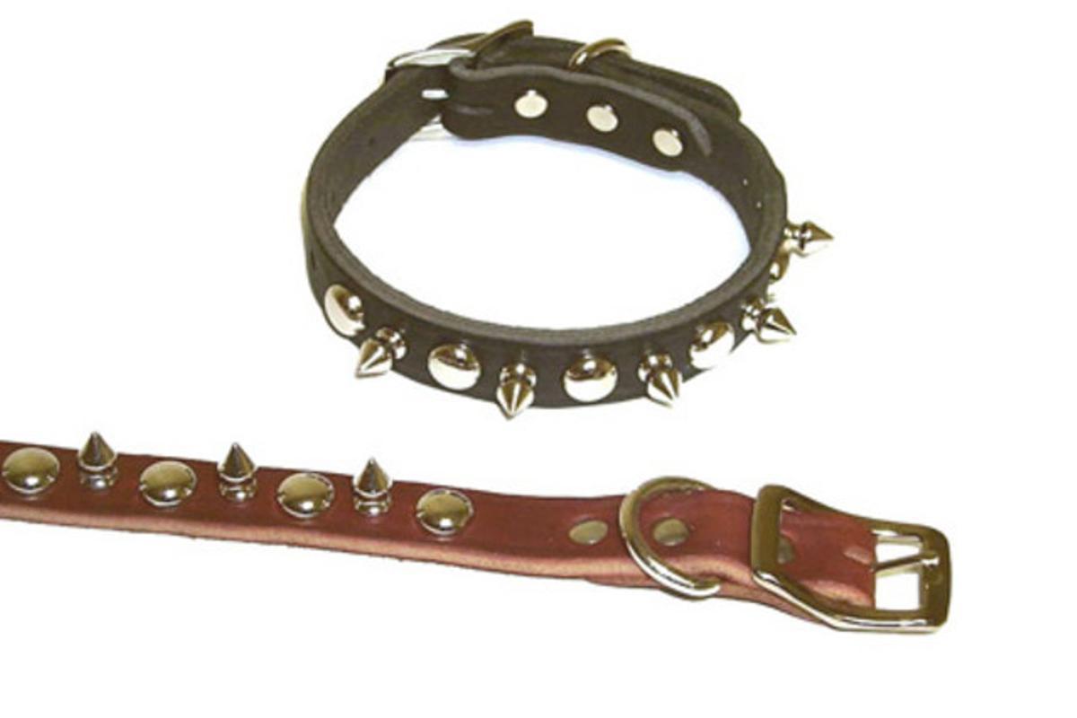 Ejemplo de un látigo y un collar de los que se usan para prácticas sadomasoquistas.