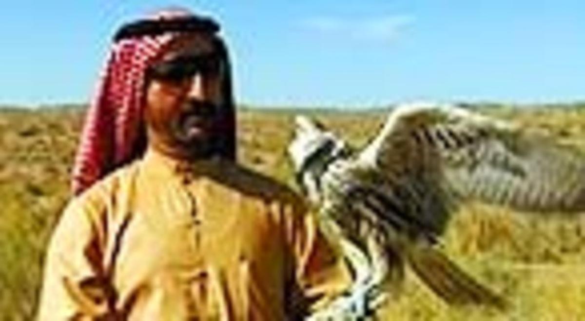 El jeque El Maktoum, con un halcón.