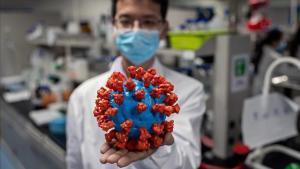 Un ingeniero muestra un modelo de plástico del coronavirus en un laboratorio de Pekín, el 29 de abril.
