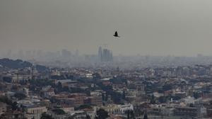 Científicos españoles revelan los peligros de la calima: por estos motivos puede ser mortal