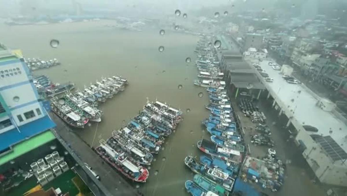 El tifón Haishen tocó tierra hoy en Corea del Sur acompañado de lluvias torrenciales y fuertes vientos, que causaron interrupciones en las redes de transporte y cortes del suministro eléctrico en miles de hogares y varias instalaciones industriales.